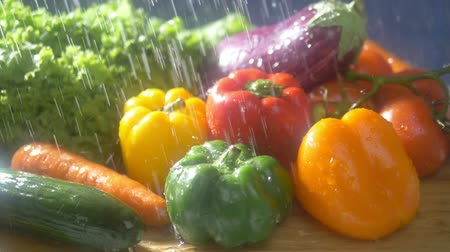 パプリカ : Fresh vegetables on a dark background in the studio under jets of rain. autumn harvest concept