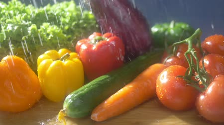 patlıcan : Fresh vegetables on a dark background in the studio under jets of rain. autumn harvest concept