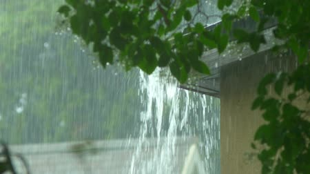 torrential rain : Rain flows from a house roof into a gutter during rain. close-up