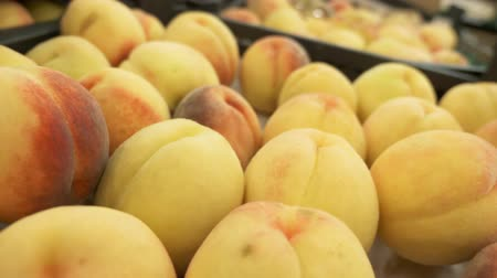 magasine : Showcase with fresh sweet apricots in a supermarket. Close-up. Fruit from the store. Apricots background. Vidéos Libres De Droits