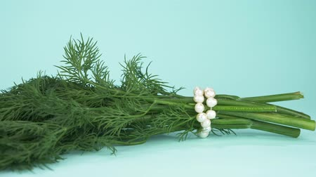 fennel : art fashion design. a bunch of dill with a string of pearls. blue background Stock Footage