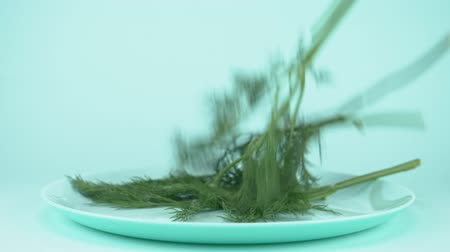 fennel : sprigs of dill are falling on a plate on blue background Stock Footage