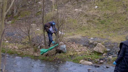 contaminação : environmental problems. volunteers collect trash on the banks of the river