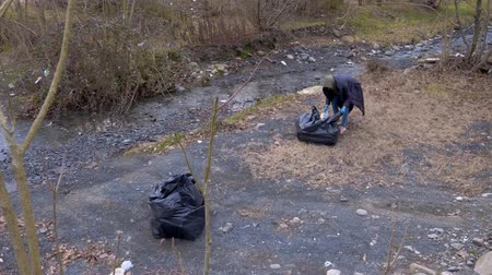 coletando : environmental problems. volunteers collect trash on the banks of the river
