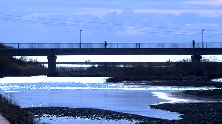 railing : silhouettes. pedestrian bridge over the river at the mouth of the river Stock Footage