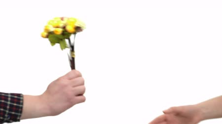 confirmed : A pair of flowers on a white background. Shooting in full face.