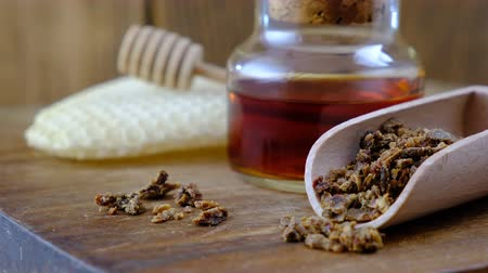 antimicrobial : A bottle of propolis tincture and a wooden scoop of propolis granules. Medical preparations bee propolis. Bee glue. Apitherapy. How to treat bee products. Stock Footage