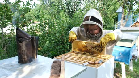 worker bees : Cheerful boy beekeeper in protective suit near beehive. Honeycomb with honey. Organic food concept. The most useful organic honey.