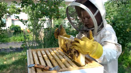 grzebień : Cheerful boy beekeeper in protective suit near beehive. Honeycomb with honey. Organic food concept. The most useful organic honey.