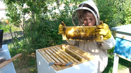 チェックボックス : Cheerful boy beekeeper in protective suit near beehive. Honeycomb with honey. Organic food concept. The most useful organic honey.