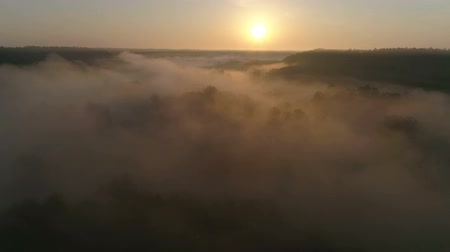 Drone footage above the fog river and fields in the morning