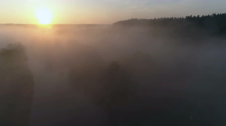 Drone footage above the river and fog Stok Video