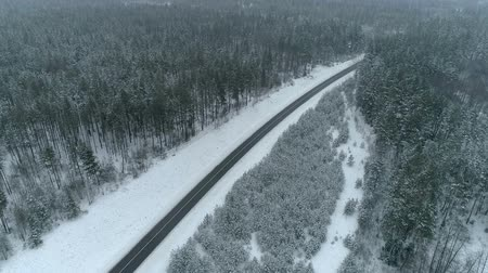 Drone footage above woods in winter road