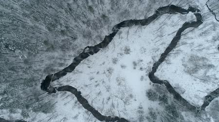 Overhead drone footage above the curvy river in winter Stok Video