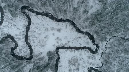 Литва : Overhead drone footage above the two curvy rivers in winter