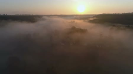 vízpart : Sunrise Drone footage above the fog and river