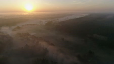 vízpart : Sunrise Drone footage above the fog curvy river and woods