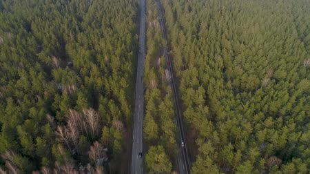 follow shot : Aerial Flight over the road between forests. Trees in the middle two roads Stock Footage