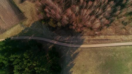 moving overhead over gravel path and trees in spring Stok Video