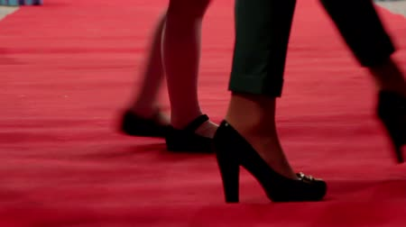 ator : Red carpet walking legs Stock Footage