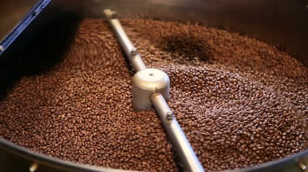 kahve çekirdeği : Traditional coffee roaster cooling of fresh roasted coffee beans. Stok Video