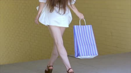 gündelik kıyafetler : Young cheerful girl shopaholic posing with shopping bag Stok Video