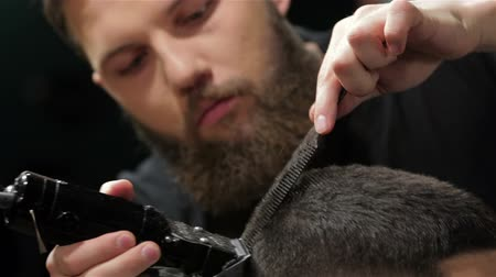 barbear : Mens hairstyling and haircutting in a barber shop or hair salon. Grooming the beard. Barbershop. Man hairdresser doing haircut beard adult men in the mens hair salon. Hairdressers in the workplace. Barber.