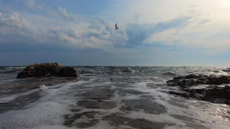 Bird flying over incoming sea waves with foam washing rocky shore. Gull over water against blue sky with clouds. Oncoming sea waves with seafoam washing-down stone coast, splash of ground swell. Tide