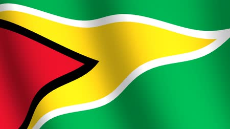 birlik : Waving flag of Guyana Stok Video
