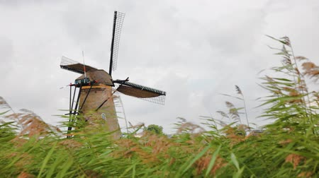 moinho de vento : Windmill in Kinderdijk, Holland