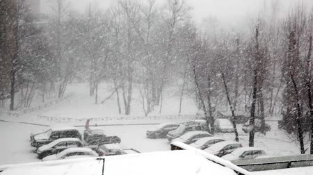 морозный : Heavy snowfall in the city. Street car parking and sidewalks covered with snow