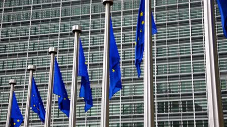 alargamento : European Union flags against the European Parliament building