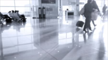 visa : Passengers with luggage walking in modern ZurichKloten Airport