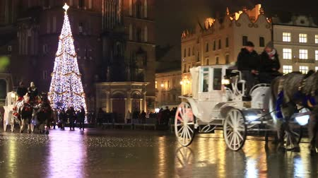 ünnepies : Traditionsl carriages of horses in festive harness passing Christmas tree at City Hall square decorated for holidays.