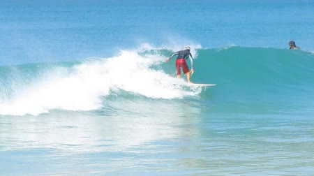 surf : Man Surfed on Blue Ocean Wave