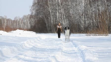 tazı : beauty woman with dog in winter country