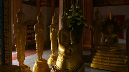 статуя : Buddha statues in the monastery Стоковые видеозаписи