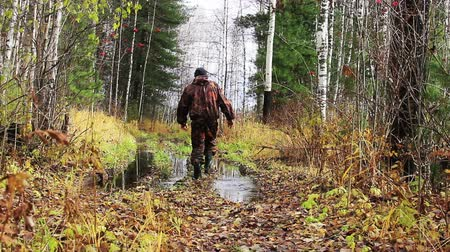 av : Hunter goes through the autumn forest. Stok Video