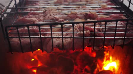 costela : Meat barbecue grilled on charcoal