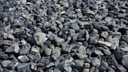 zaoblený : Nature background from dark sea pebbles