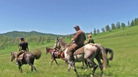 galope : ALTAI, RUSSIA JUNE 10, 2017: Five men ride in the summer field. Shepherds return home after work