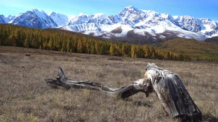bozulmamış : View on Altai mountain plateau Eshtykel. North Chuisky ridge . Siberia, Russia
