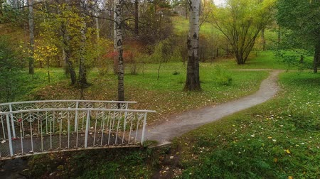 Форрест : bridge over a small river in the autumn park