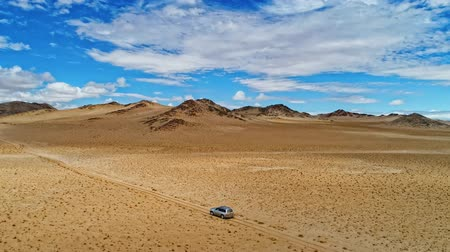 gobi : Aerial footage of car overcoming sandy dunes racing on desert off roads, birds eye view of truck driving on sandy lands of desert