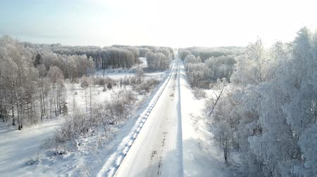 Countryside road through winter field with birch forest covered with hoarfrost. Wideo