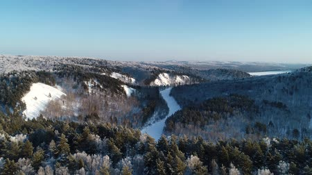 Siberian winter forest. Mountain and river covered by snow Wideo
