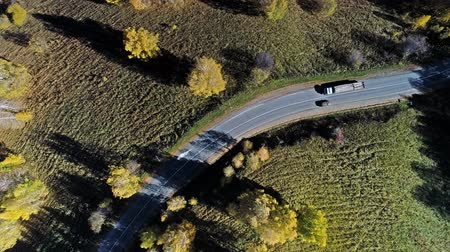 serpentine : Flight over the road between fields. Aerial of green countryside and car driving through.