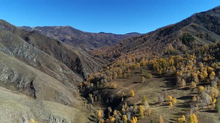 Aerial view of autumn mountain landscape