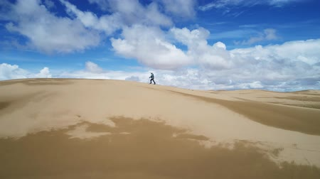 altay : Tourist walking along the edge of the sand dune. Large barkhan in Mongolia sandy dune desert Mongol Els. Govi-Altay, Mongolia.