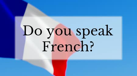 francês : Do you speak French text w French flag background. Learn French language concept